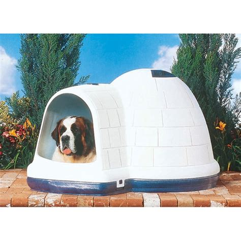 extra large igloo dog house southernstates com petmate indigo dog house x large