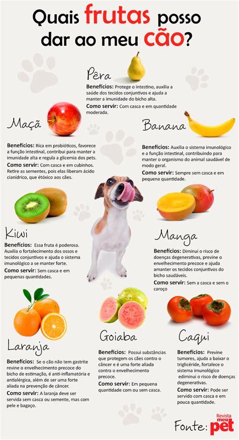 como saber qual a penso de alimentos para filhos em portugal os c 227 es e as frutas 201 do babado por evelyn regly moda