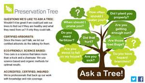 ordinary Importance Of Money Plant At Home #8: PTS-Tree-info-ask-a-tree.jpg