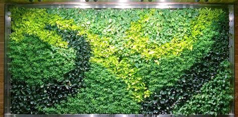 Vertikal Pflanzen by Living Walls Vertical Plant Systems The Green Thumb