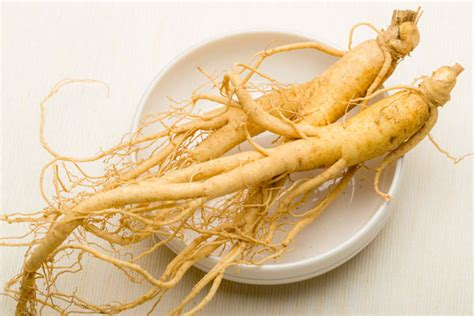13 health benefits of ginseng how it helps in weight