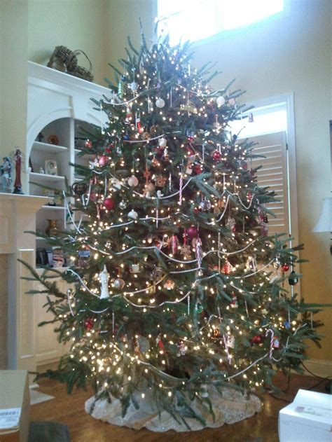pin by eloise mullins on oh christmas tree pinterest