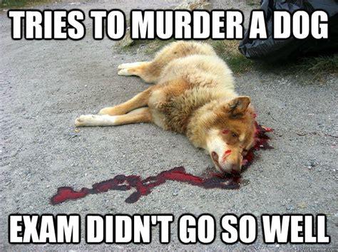 Law Dog Meme - criminal law memes image memes at relatably com