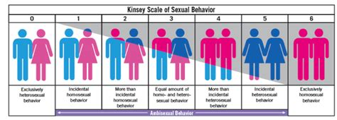 sexuality test the kinsey scale the rainbow