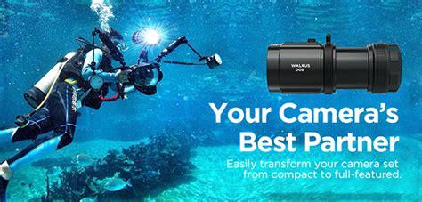 Xtar D08 Diving Waterproof Senter Led Cree Xp E2 2000 Lumens xtar d08 walrus led underwater diving photographing flashlight torch kit 704256211127 ebay