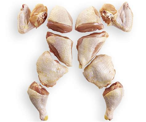 whole chicken parts diagram how to cut a whole chicken into pieces finecooking