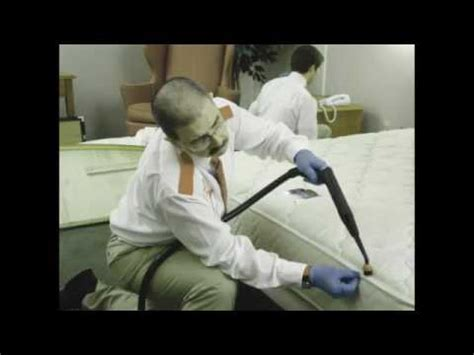 what kills bed bugs for good bed bug heat treatment toronto kill bed bugs with heat