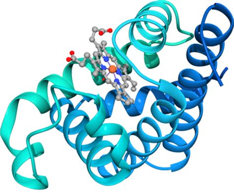 protein data bank wwpdb worldwide protein data bank