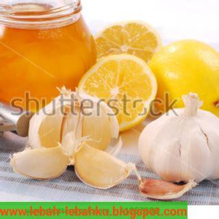 Madu Mentah Madu Asli Madu Murni Madu Ternak Obat Herbal Alami 1 inilah khasiat madu plus bawang putih ternak klanceng