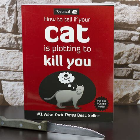 How To Tell If Your Cat Is Plotting To Kill You   Buy from