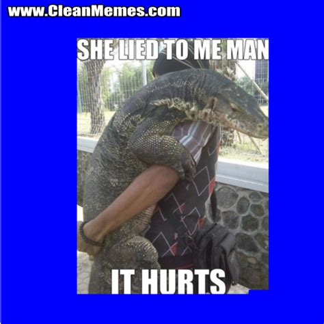 Lizard Meme - hehehe lizard memes