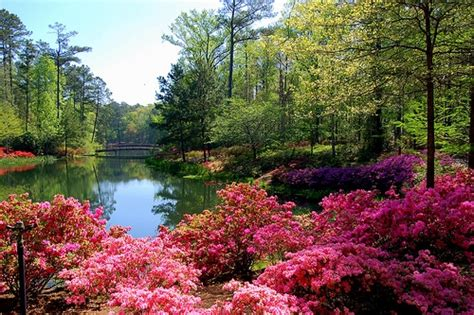 Callaway Gardens by Callaway Gardens Nature Partners