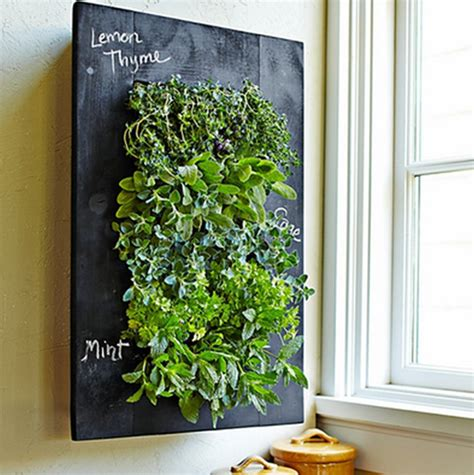 Vertical Garden Herbs 8 Easy Ways To Create A Vertical Garden Wall Inside Your Home