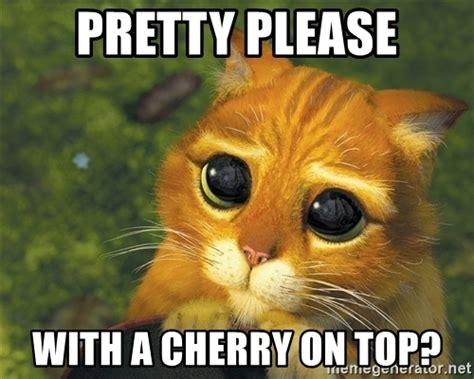 Please Meme - pretty please meme pictures to pin on pinterest pinsdaddy