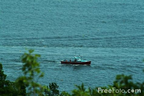 lobster boat acadia lobster boat acadia national park maine usa pictures