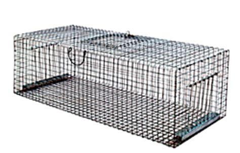 gabbie cattura piccioni trappole per animali gabbie gabbia