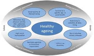 ijerph free full text indicators for healthy ageing