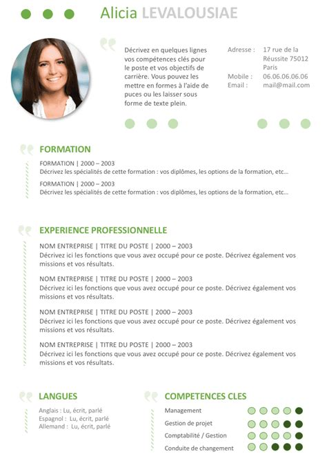 Exemple Type De Cv by Exemple De Cv Attractif Gratuit 224 T 233 L 233 Charger