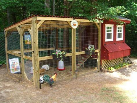 backyard chicken com backyard chicken coop pictures with inside chicken coop