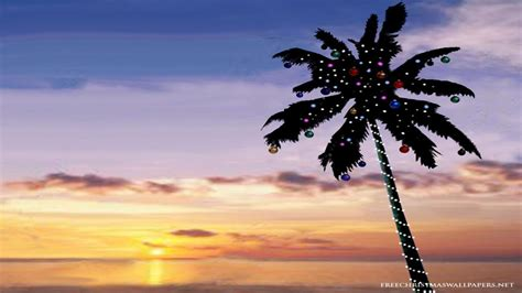 tropical christmas wallpapers wallpaper cave