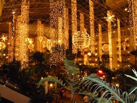 mai thai wanderings christmas lights at gaylord opryland