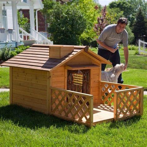dog houses outside outdoor dog house ideas trusper