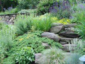 Landscape Pictures Slope Steep Slope Landscape Planting Traditional Landscape