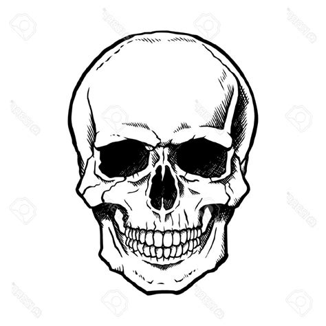 simple skull tattoos basic skull drawing at getdrawings free for personal