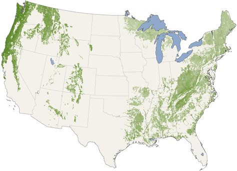 forest map of usa forest canopy heights across the united states image of