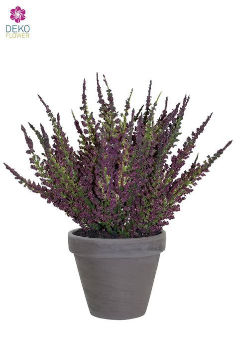 erika pflanze k 252 nstliche erika pflanze weinrot 27cm im tontopf