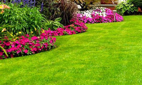 Como Cuidar Un Jardin