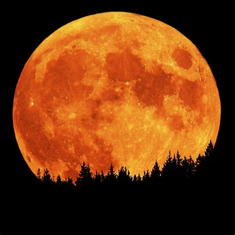 9 Full Moons 2013 Protect Our Shoreline News June 2013