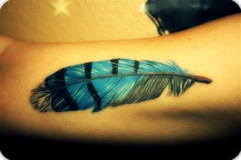 blue jay feather tattoo best 25 feather bird tattoos ideas that you will like on