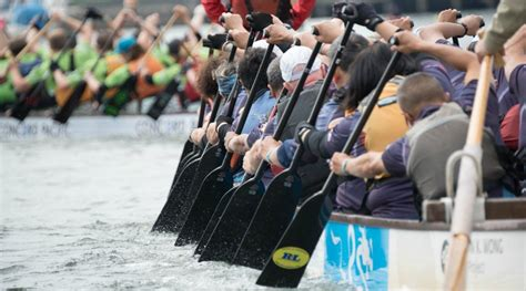 vancouver international dragon boat festival 2017 4 free race chionships you need to see at the dragon