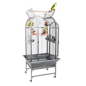 gabbie per pappagalli grandi gabbie per pappagalli economiche e spaziose pet magazine