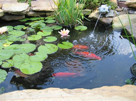 how to build a backyard pond landscape design landscaping tips