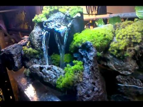 Betta Aquascape Check Out My Waterfall I Built For My 55 Gal Tank Youtube