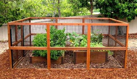 Deer Proof Vegetable Garden Gardens Boxes Proof Gardens Gardens Fence Chicken Wire