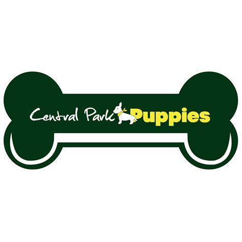 central park puppies central park puppies yonkers ny company information