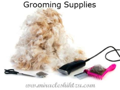 how do you groom a shih tzu shih tzu grooming supplies checklist