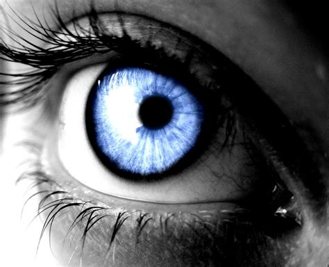 the photographers eye a human eye photography www pixshark com images galleries with a bite
