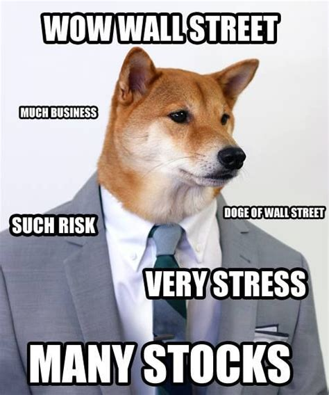 What Is Doge Meme - 25 great ideas about doge meme on pinterest funny doge