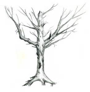 sketch of dead tree sun ran s e portfolio