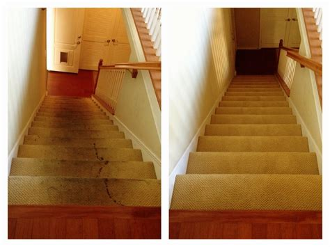 zerorez carpet cleaning carpet vidalondon