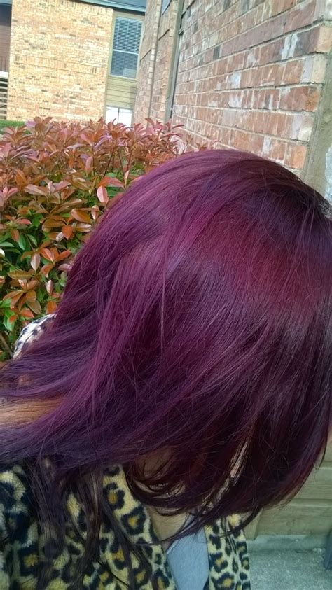 london lilac hair color reviews 17 best images about london lilac hair color