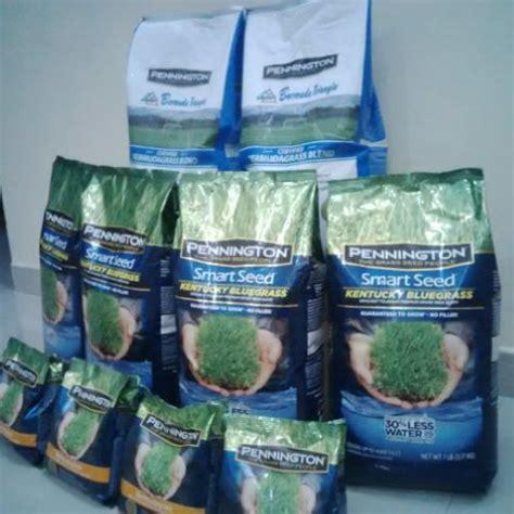 Biji Benih Rumput Bermuda pusat biji benih rumput bermuda rumput taman lapangan