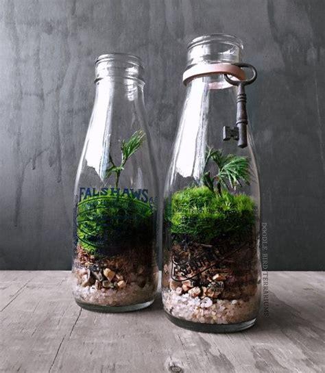 beautiful bottle gardens     beam bored art