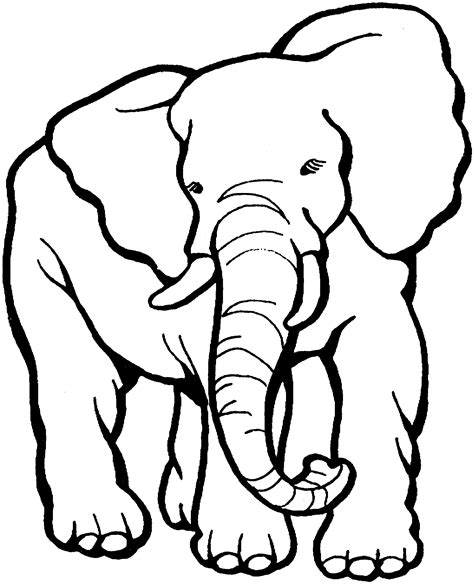 coloring page for elephant free coloring pages of animals face