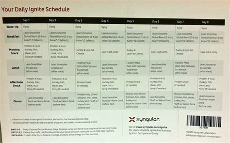 Keto Detox Plan by Xyngular 8 Day Challenge Preparation Day Keto Detox
