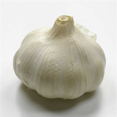 can you treat a yeast infection by sticking a garlic clove